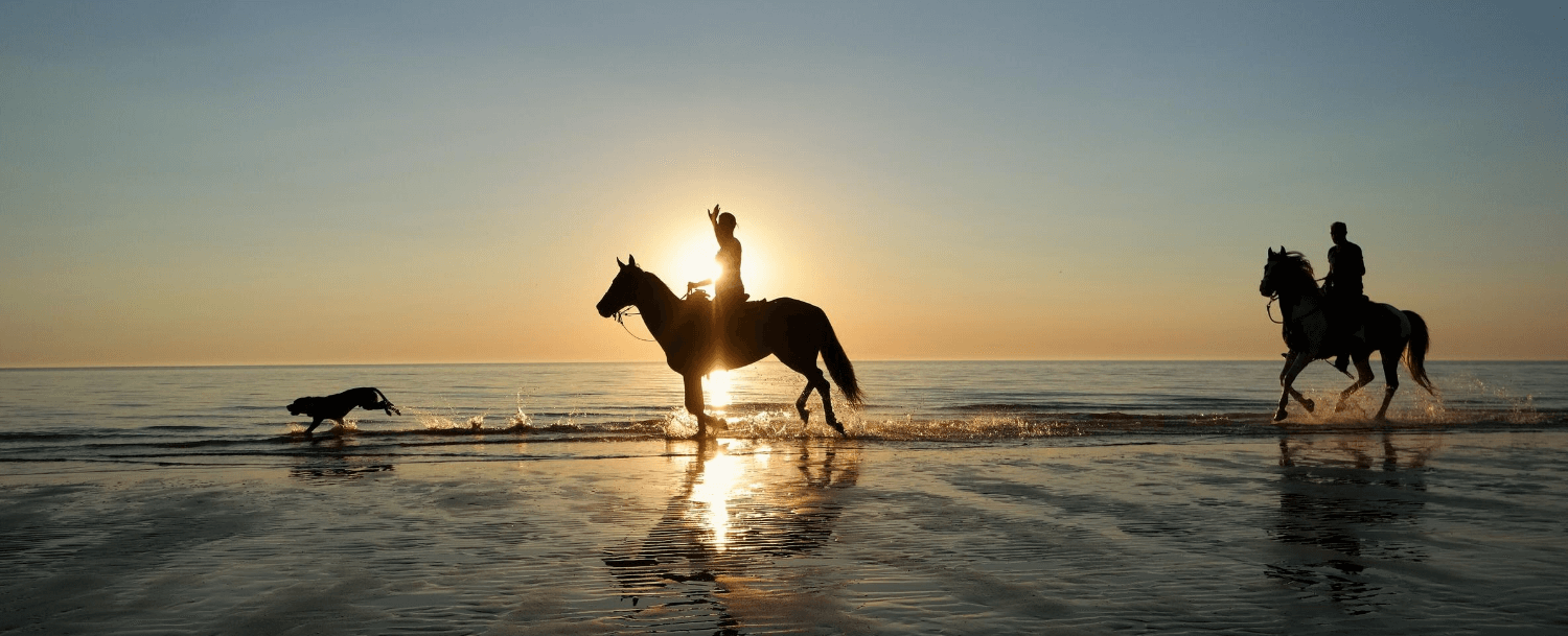 Seabrook Island Equestrian Center