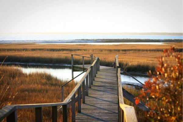 Dock during Fall at Kiawah Island