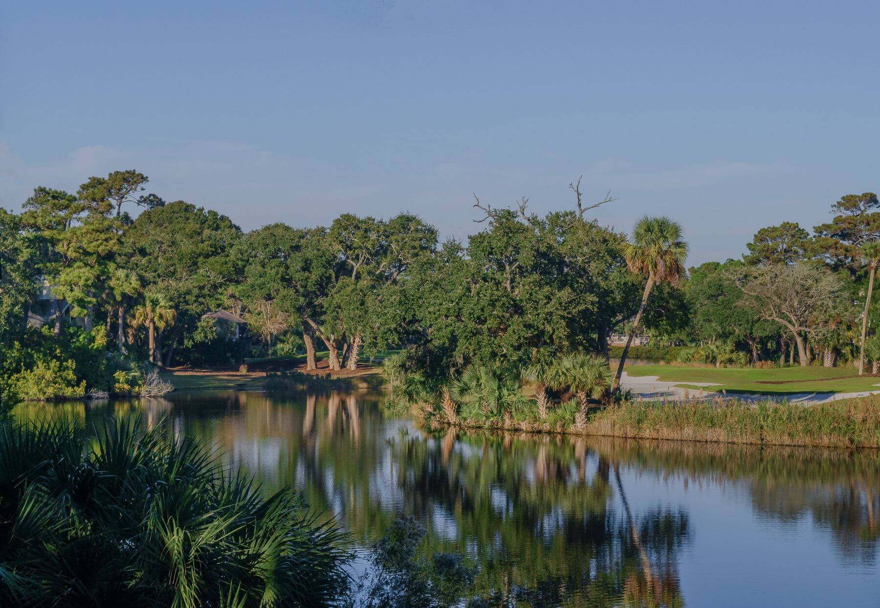 Serene lagoon views at 129 Bufflehead on Kiawah Island.