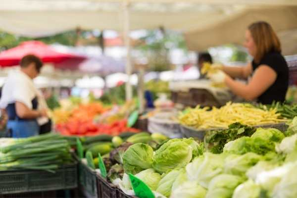 Charleston Fall Farmers Market
